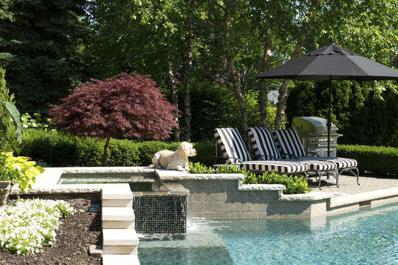 5 of the latest pool design trends for Pool design trends